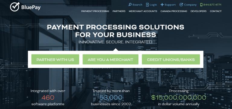 BluePay Processing LLC