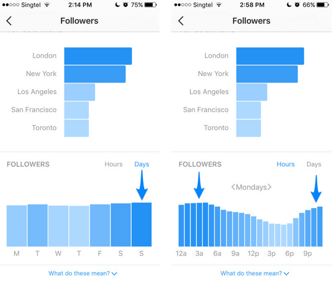 Followers Graph