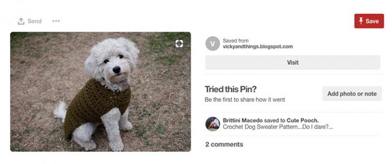 Physical product (dog costume) selling on Pinterest